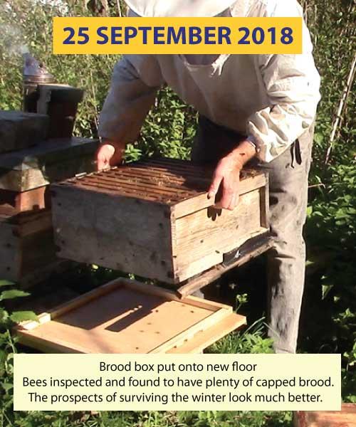 Inspection 25th September 2018