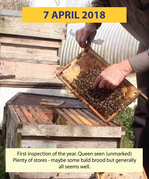 First inspection 7th April 2018