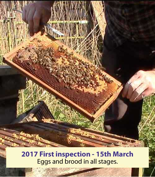 First inspection 15 March 2017