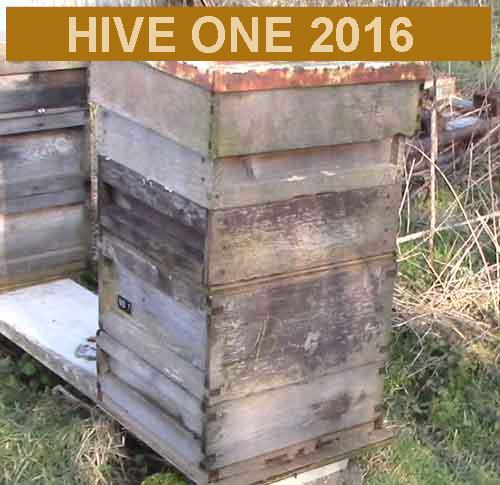 Hive one 2016