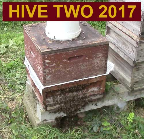 Hive two 2017