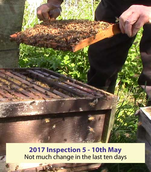 Inspection five - not much to report