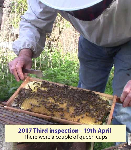 Third inspection 19th April 2017